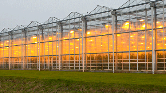 Agricultural Heating